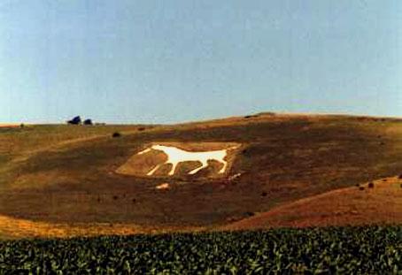 глиф Белая лошадь (Уилшир, Великобритания)
